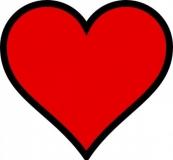 El colesterol y las enfermedades cardiovasculares