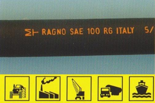 Ragno SAE 100 R6
