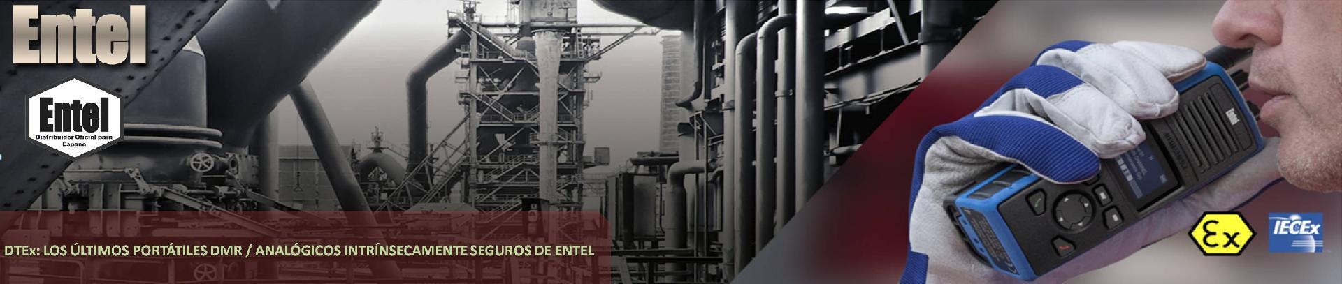 ENTEL DT