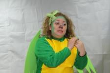 Carnaval-2011