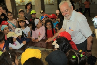 Visit to the Museum of Turtles