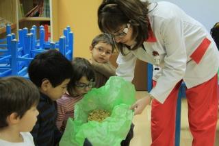 PROYECTOS: Taller de medicina natural desde el aula de infantil