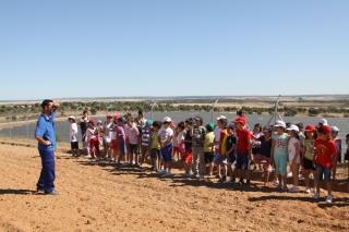 Visita a un Campo de Placas Solares: cosechando al Sol