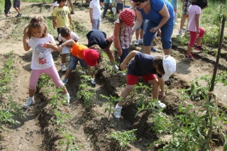 Los alumnos del Campus realizan labores de horticultura y reciben lecciones de biología en inglés