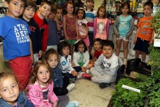Visita al Vivero: sembar plantas y conocer el ambiente
