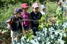 Segunda visita al Huerto Escolar: educación ambiental que progresa