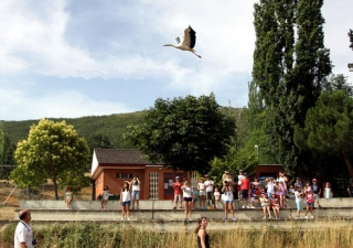 Los alumnos del Campus asisten a la suelta de aves en Tamames