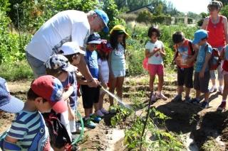 El pimiento, la nueva hortaliza sembrada por los niños en el Huerto Escolar