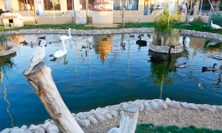 Este domingo excursión al Parque zoológico La Era de las Aves