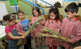 Taller de botánica con espigas y legumbres en vaina