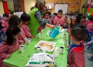 Crear semilleros en la escuela para investigar