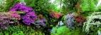 Puzzle 6000 piezas Bodnant garden