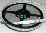 TIRA TUBO DE SILICONA LED 5m 72W Color Program.RGB