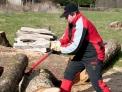 Gancho recoge troncos de 50 cm