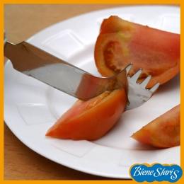 Cuchillo tenedor mango grueso
