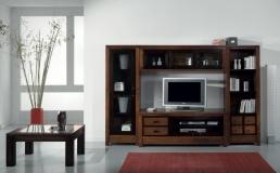 COMPOSICION MODULAR TV