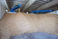 Primer centro logístico de biomasa en Extremadura