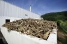 Logística de biomasa