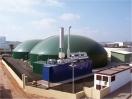 Gestión y valorización energética de residuos y subproductos agroalimentarios