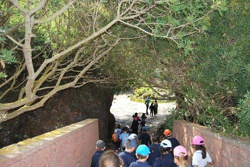 Visitamos el jard n canario colegio ntra sra de las for El jardin canario