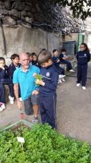 Nueva visita de 3ºEP al huerto escolar