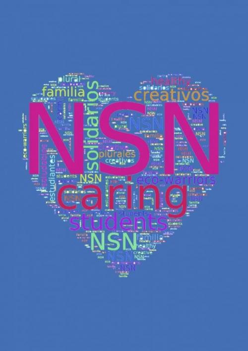 NSN caring