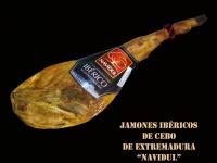 J. IBÉRICOS DE EXTREMADURA