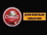 QUESO CURADO MINI