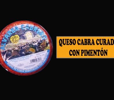 QUESO CABRA CURADO P.