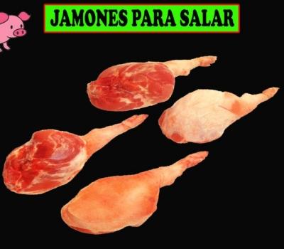 JAMONES PARA SALAR