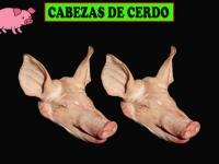 CABEZAS DE CERDO