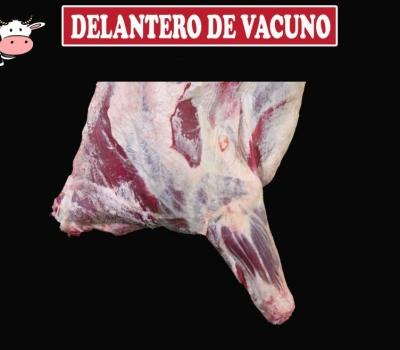 DELANTERO DE VACUNO