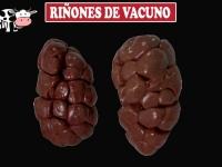 RIÑONES DE VACUNO