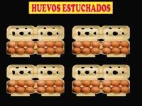 HUEVOS ESTUCHADOS