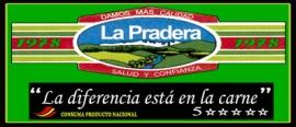 DESDE 1978 PENSANDO EN MEJORAR