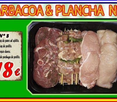 BARBACOA/PLANCHA Nº8