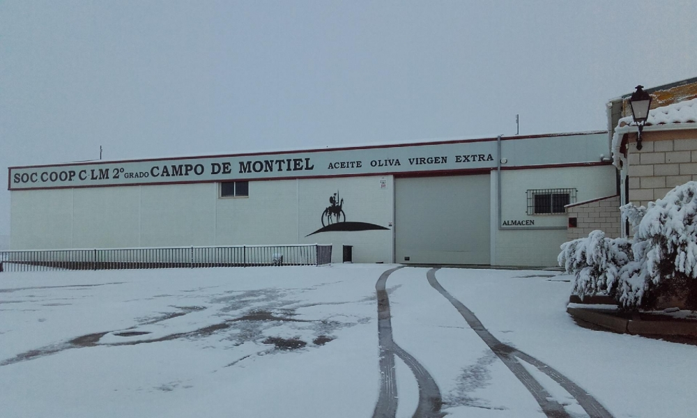 fábrica nevada