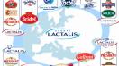Lactalis crece en España: Competencia aprueba compra de 100% de El Castillo Debic