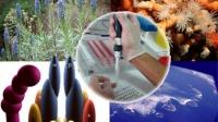 España, segunda en uso de biotecnología en el mundo