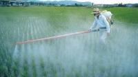 Los pesticidas en alimentos bajan a 1,2% en la UE