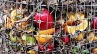 Los restaurantes españoles tiran a la basura € 25.000 millones en alimentos
