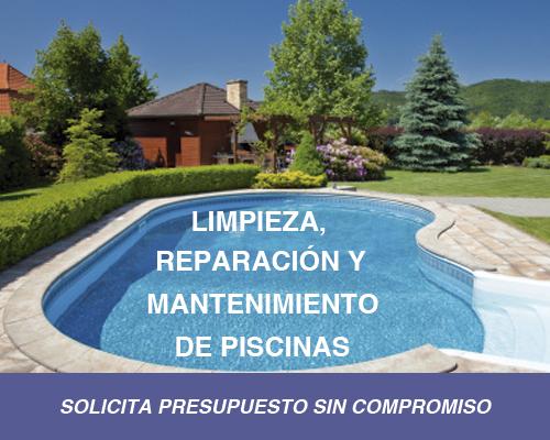 Construccion piscinas oviedo asturias mantenimiento for Sonar con piscina