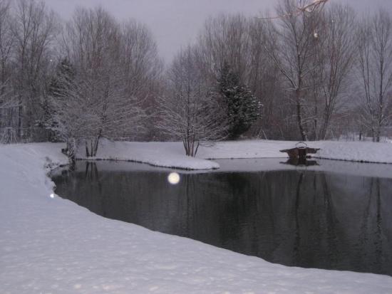 ell lago de pesca nevado