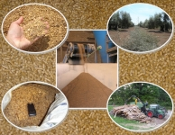 Calidad de biomasas mediterráneas. Nuevo sello de calidad para uso doméstico