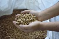 Nuevo productor español de pellets calidad ENplus®