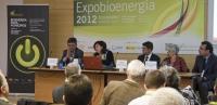 Bioenergía para Municipios, León 17 abril