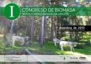 Congreso biomasa forestal aragon AVEBIOM