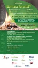 Jornada de Biomasa Forestal: Situación actual y retos del futuro