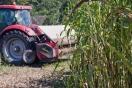 Más investigación para producir biocombustibles en tierras sin otros usos