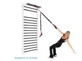 suspension trainer, TRX, trending fit, suspension